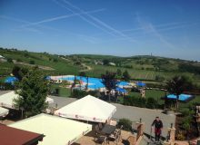 Quite_a_view_Terrace_pool_and_vineyards_500_375.jpg